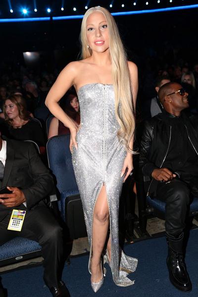 AMA-2013-Best-Lady-Gaga