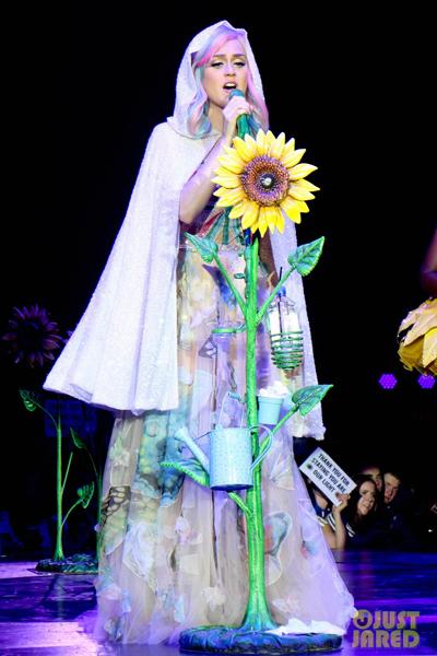 Katy-concert-1